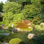 Maar dan kom je bij een tempel die toch weer de moeite waard is en ook een mooie bijbehorende tuin heeft. Deze tempel heet Sho-ren-in.
